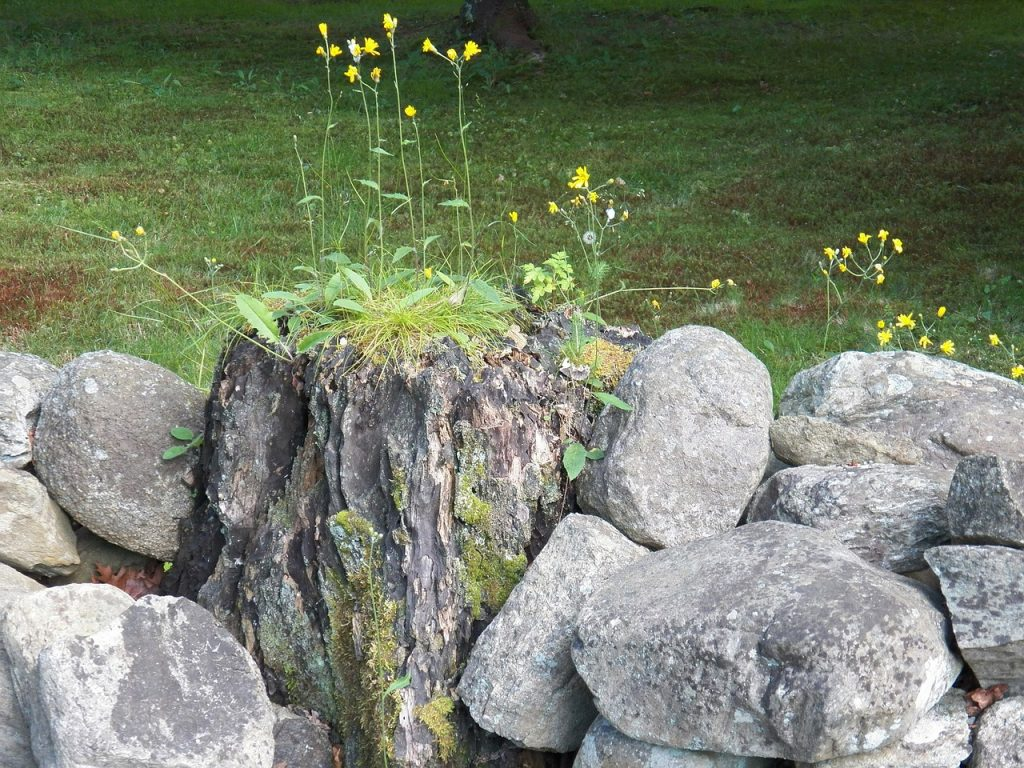 how to get rid of rocks in yard