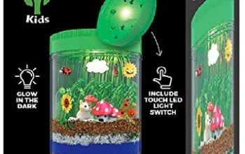 Light-up Terrarium Kit for Kids LED Light on Lid – Science Kit for Kids – Crafts & Arts Create Customized Mini Garden for Children – Toys Gifts for Boys & Girls Age 3, 4, 5, 6, 7+ Year Old – Kids Toys