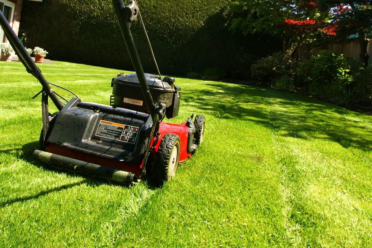 Best Lawn Mowers For All Budgets
