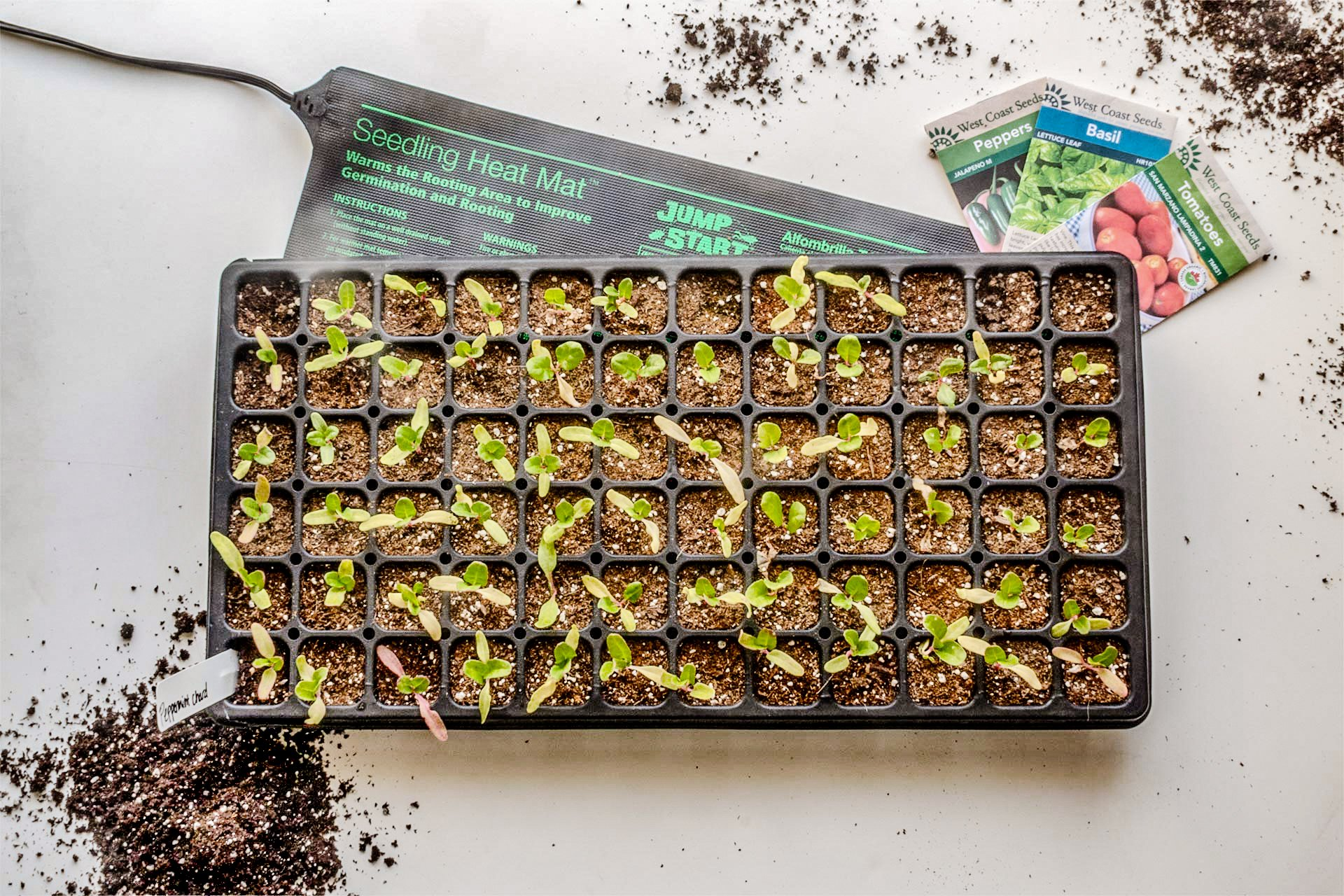 Plants heat mat