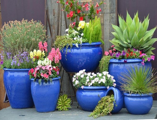 Blue Outdoor Planters